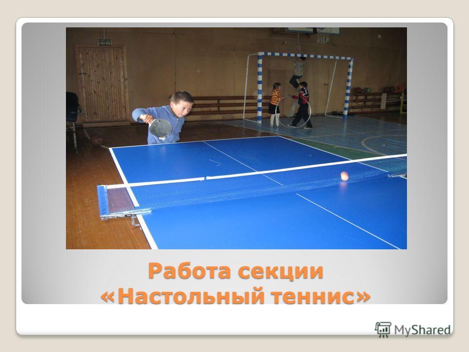 Работа секции «Настольный теннис»