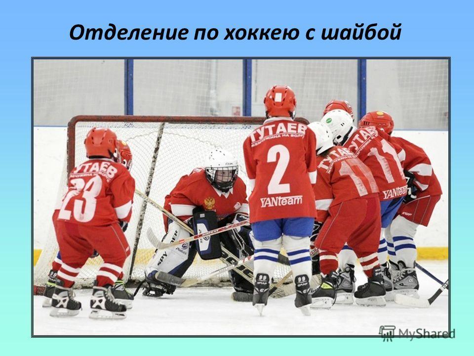 Отделение по хоккею с шайбой