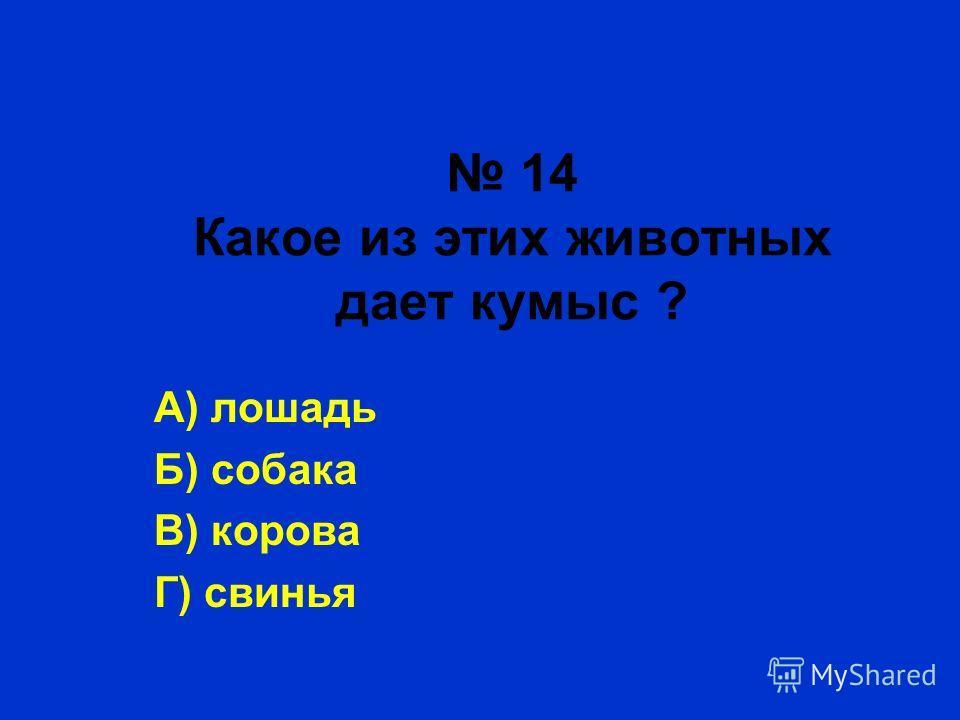 14 Какое из этих животных дает кумыс ? А) лошадь Б) собака В) корова Г) свинья