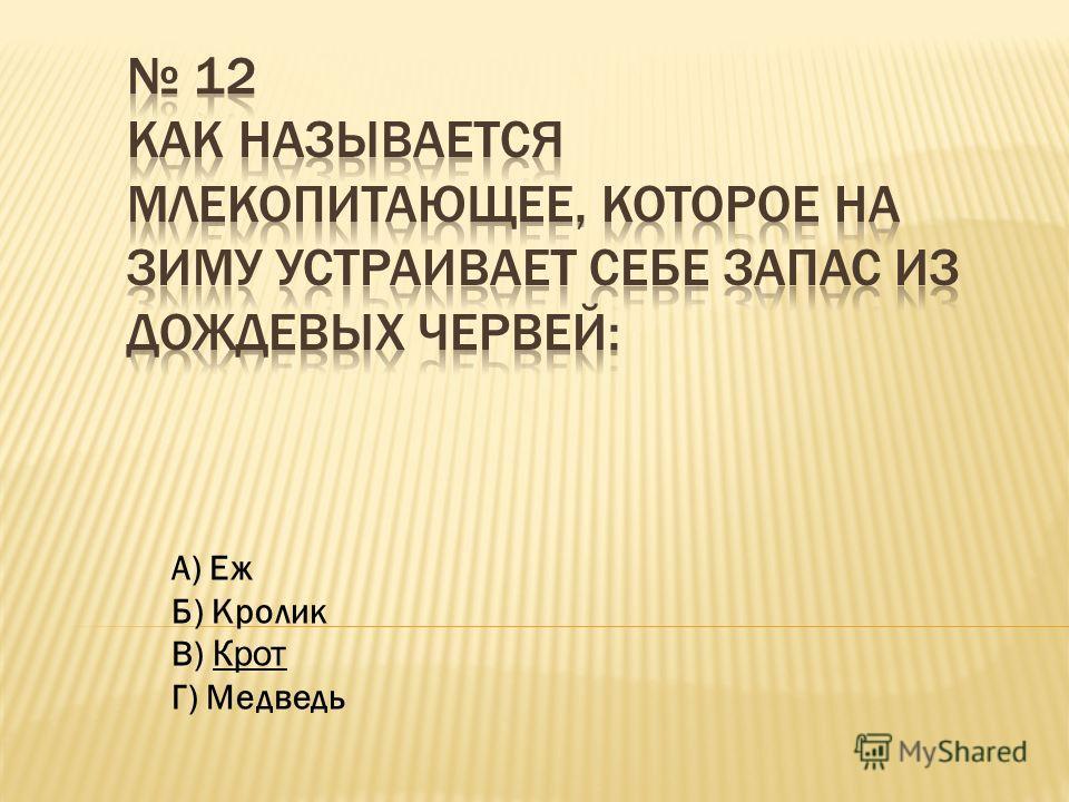 А) Еж Б) Кролик В) Крот Г) Медведь