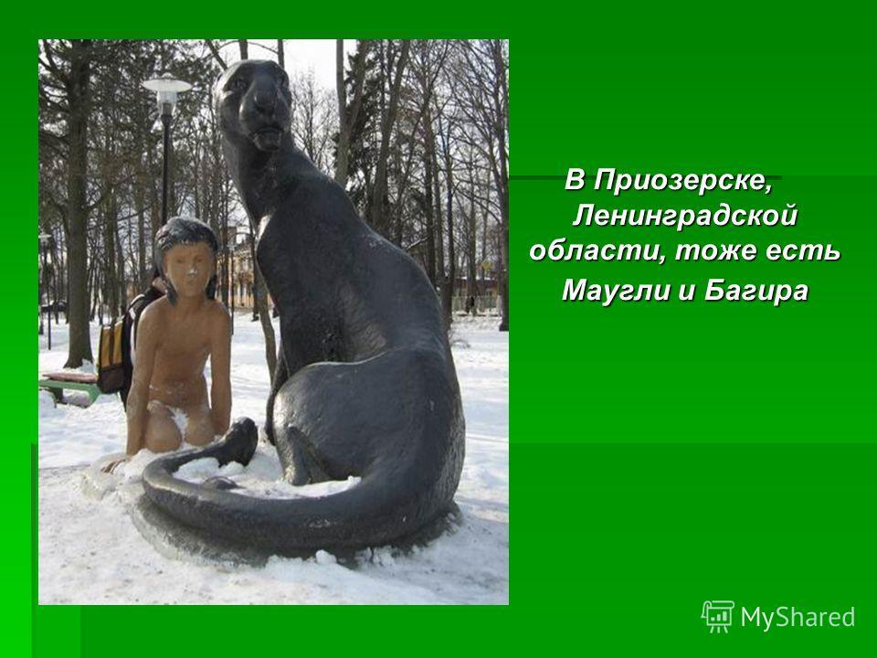 В Приозерске, Ленинградской области, тоже есть Маугли и Багира