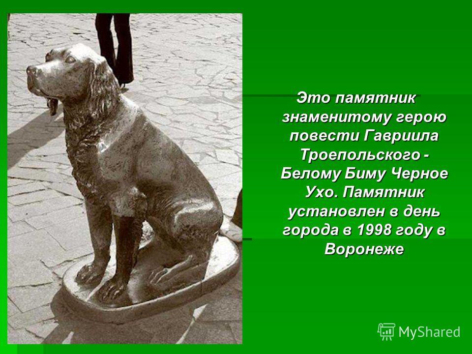 Это памятник знаменитому герою повести Гавриила Троепольского - Белому Биму Черное Ухо. Памятник установлен в день города в 1998 году в Воронеже