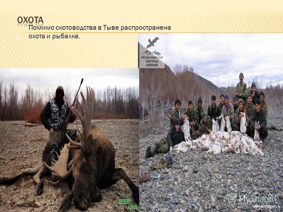 Помимо скотоводства в Тыве распространена охота и рыбалка.