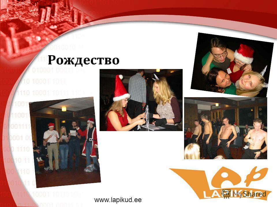 Рождество www.lapikud.ee