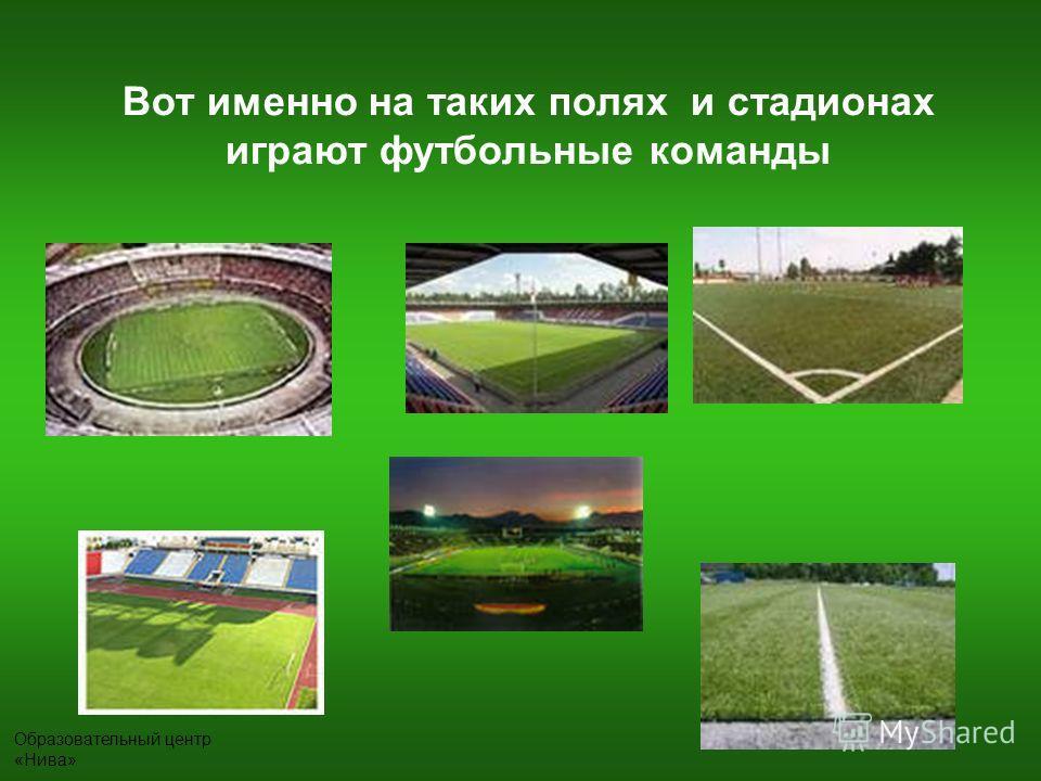 Вот именно на таких полях и стадионах играют футбольные команды
