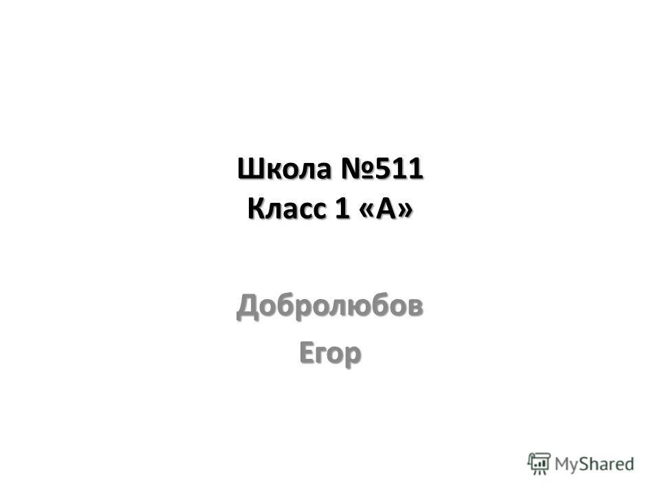 Школа 511 Класс 1 «А» ДобролюбовЕгор