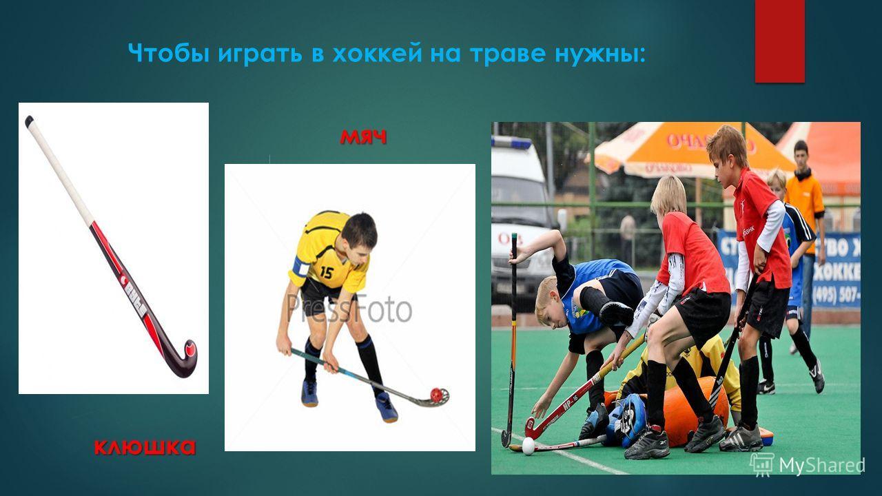 Чтобы играть в хоккей на траве нужны: клюшка мяч