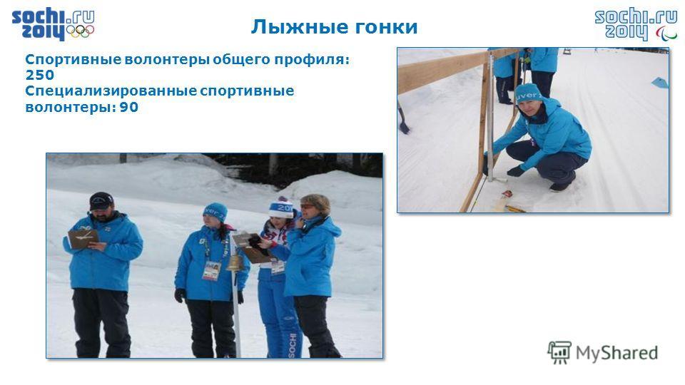 Лыжные гонки Спортивные волонтеры общего профиля: 250 Специализированные спортивные волонтеры: 90