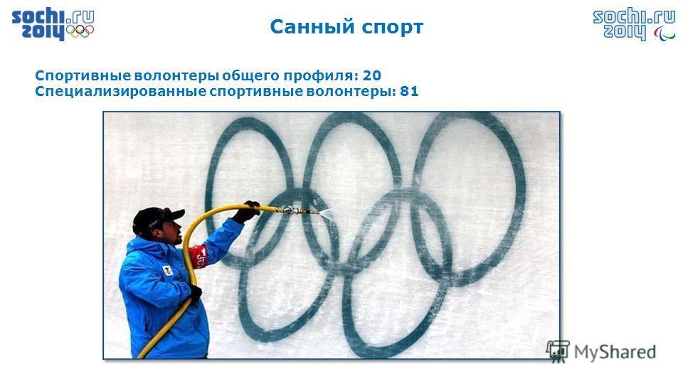 Санный спорт Спортивные волонтеры общего профиля: 20 Специализированные спортивные волонтеры: 81