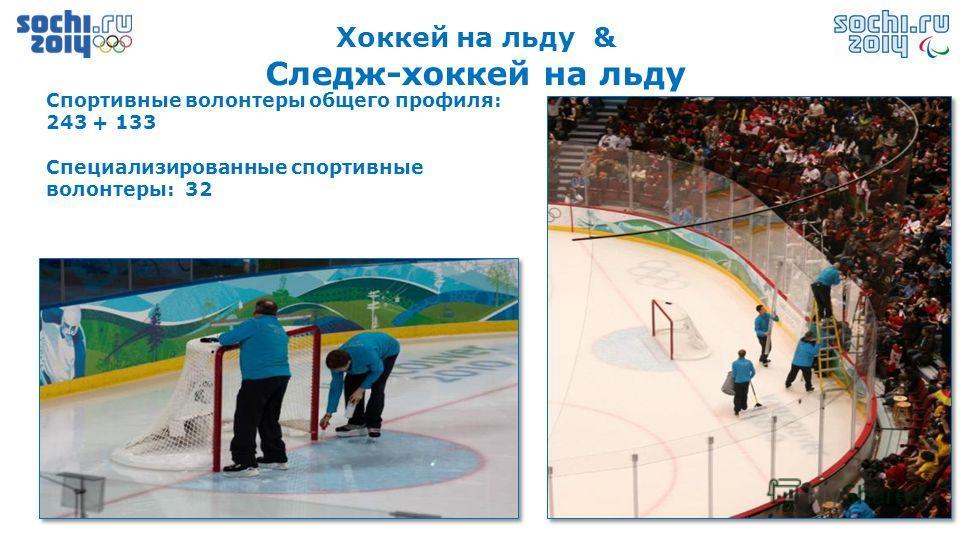 Хоккей на льду & Следж-хоккей на льду Спортивные волонтеры общего профиля: 243 + 133 Специализированные спортивные волонтеры: 32