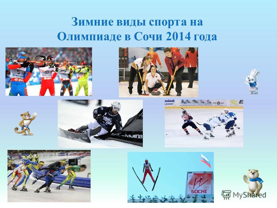 Зимние виды спорта на Олимпиаде в Сочи 2014 года