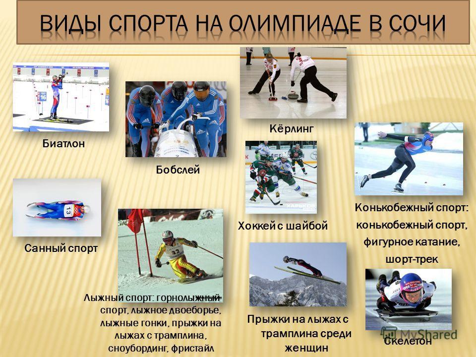 Скелетон Биатлон Бобслей Конькобежный спорт: конькобежный спорт, фигурное катание, шорт-трек Кёрлинг Лыжный спорт: горнолыжный спорт, лыжное двоеборье, лыжные гонки, прыжки на лыжах с трамплина, сноубординг, фристайл Санный спорт Хоккей с шайбой Прыж