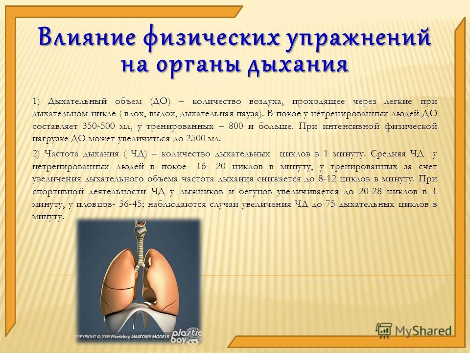 1) Дыхательный объем (ДО) – количество воздуха, проходящее через легкие при дыхательном цикле ( вдох, выдох, дыхательная пауза). В покое у нетренированных людей ДО составляет 350-500 мл, у тренированных – 800 и больше. При интенсивной физической нагр