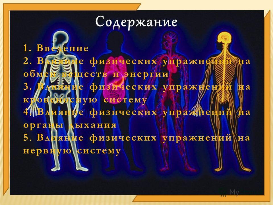 1. Введение 2. Влияние физических упражнений на обмен веществ и энергии 3. Влияние физических упражнений на кровеносную систему 4. Влияние физических упражнений на органы дыхания 5. Влияние физических упражнений на нервную систему Содержание