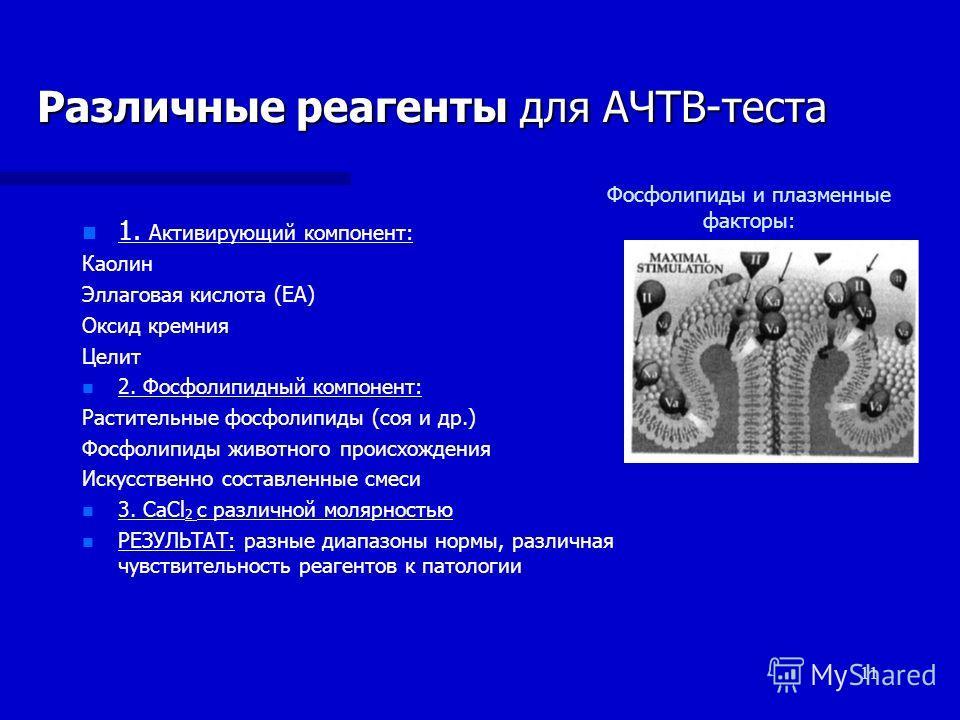 11 Различные реагенты для АЧТВ-теста n n 1. Активирующий компонент: Каолин Эллаговая кислота (ЕА) Оксид кремния Целит n n 2. Фосфолипидный компонент: Растительные фосфолипиды (соя и др.) Фосфолипиды животного происхождения Искусственно составленные с