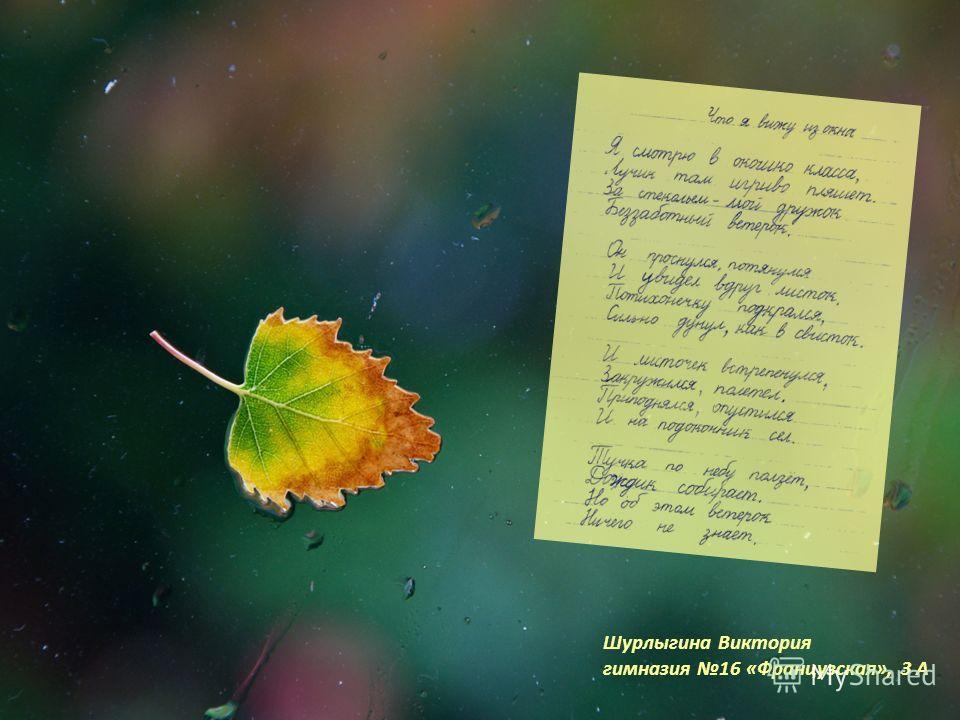 Шурлыгина Виктория гимназия 16 «Французская», 3 А