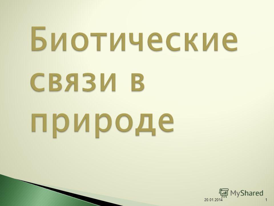 Биотические связи в природе 20.01.20141
