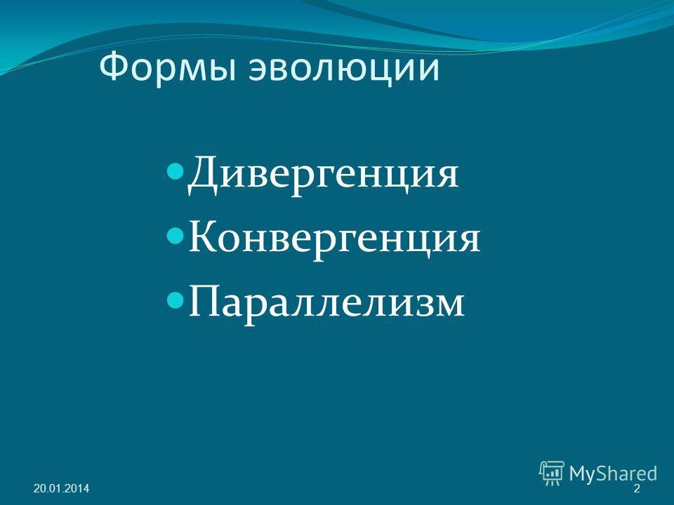 Формы эволюции Дивергенция Конвергенция Параллелизм 20.01.20142