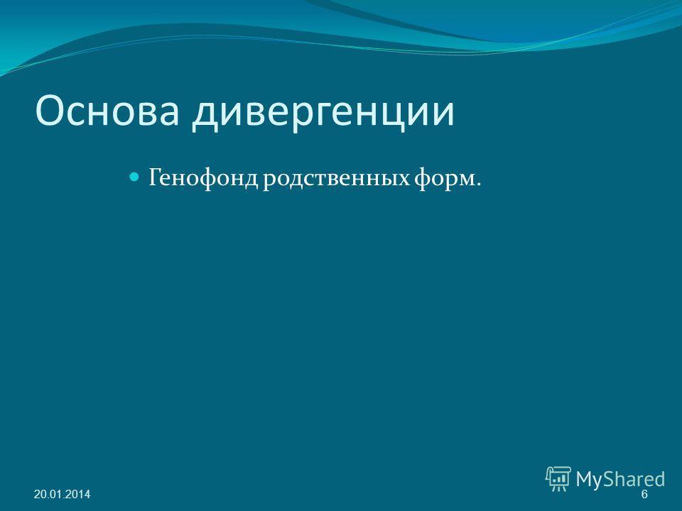 Основа дивергенции Генофонд родственных форм. 20.01.20146