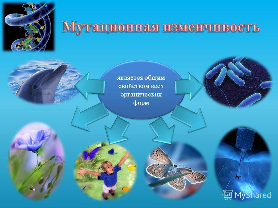 является общим свойством всех органических форм