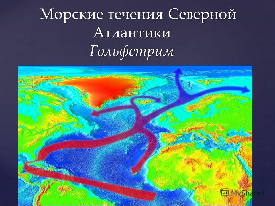 Морские течения Северной Атлантики Гольфстрим Морские течения Северной Атлантики Гольфстрим