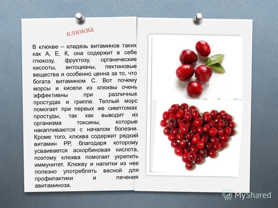 клюква В клюкве – кладезь витаминов таких как А, Е, К, она содержит в себе глюкозу, фруктозу, органические кислоты, антоцианы, пектиновые вещества и особенно ценна за то, что богата витамином С. Вот почему морсы и кисели из клюквы очень эффективны пр
