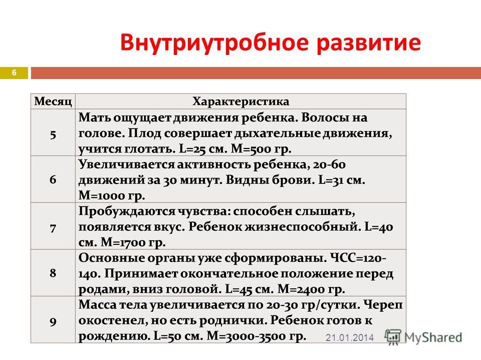 Внутриутробное развитие 21.01.2014 6