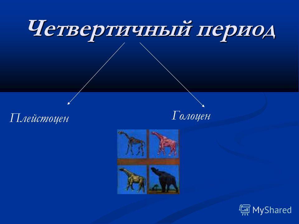 Четвертичный период Плейстоцен Голоцен
