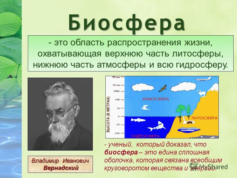 Биосфера - это область распространения жизни, охватывающая верхнюю часть литосферы, нижнюю часть атмосферы и всю гидросферу. Владимир Иванович Вернадский Вернадский - ученый, который доказал, что биосфера – это едина сплошная оболочка, которая связан