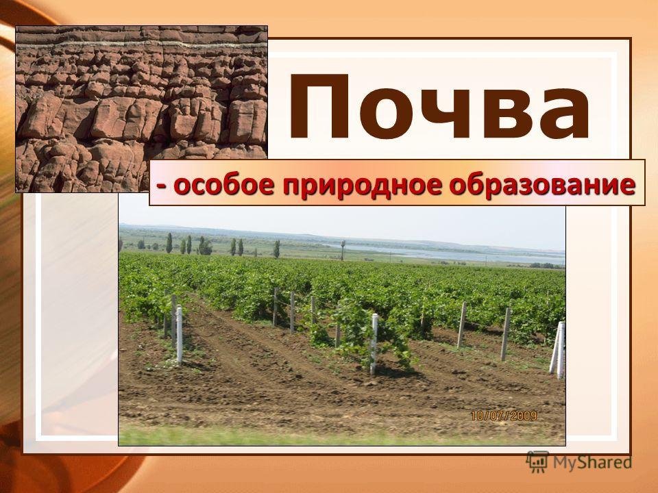 Почва - особое природное образование