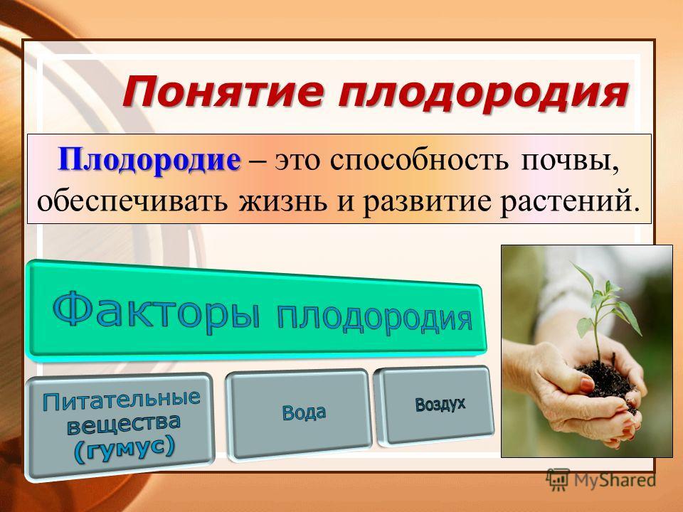 Понятие плодородия Плодородие Плодородие – это способность почвы, обеспечивать жизнь и развитие растений.