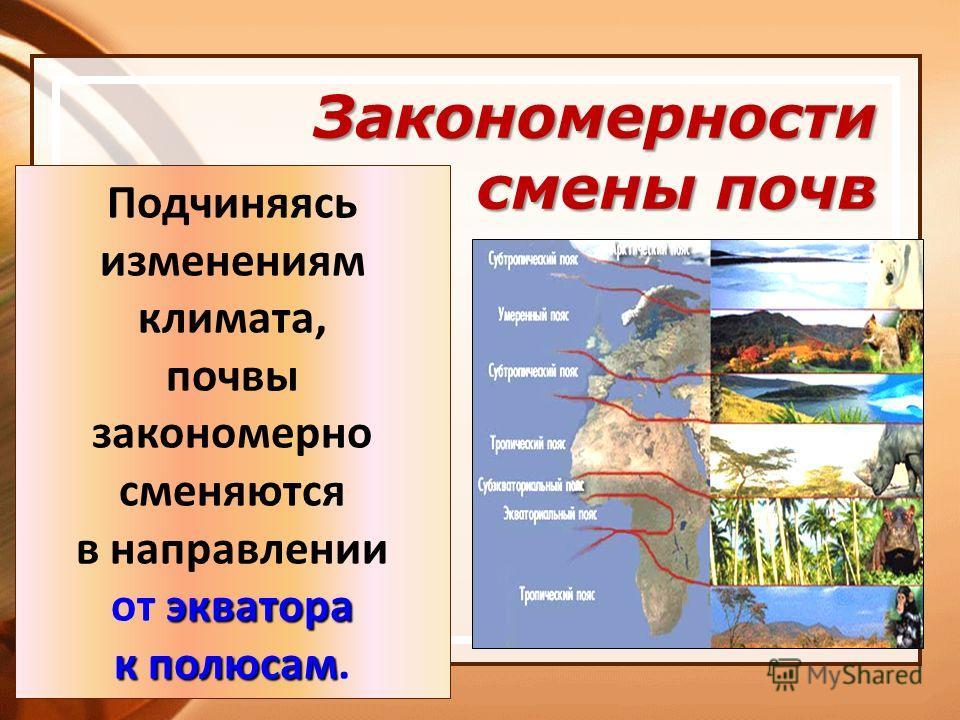 Закономерности смены почв Подчиняясь изменениям климата, почвы закономерно сменяются в направлении экватора от экватора к полюсам к полюсам.