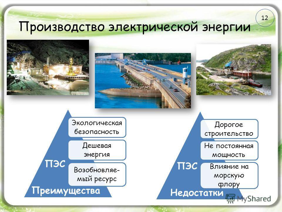 Производство электрической энергии Экологическая безопасность Дешевая энергия Возобновляе- мый ресурс Дорогое строительство Не постоянная мощность Влияние на морскую флору Преимущества Недостатки ПЭС 12