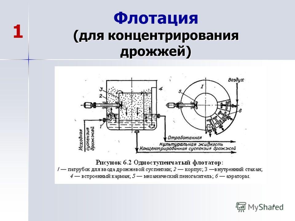 6 (для концентрирования дрожжей) Флотация (для концентрирования дрожжей) 1