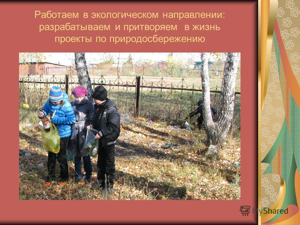 Работаем в экологическом направлении: разрабатываем и притворяем в жизнь проекты по природосбережению
