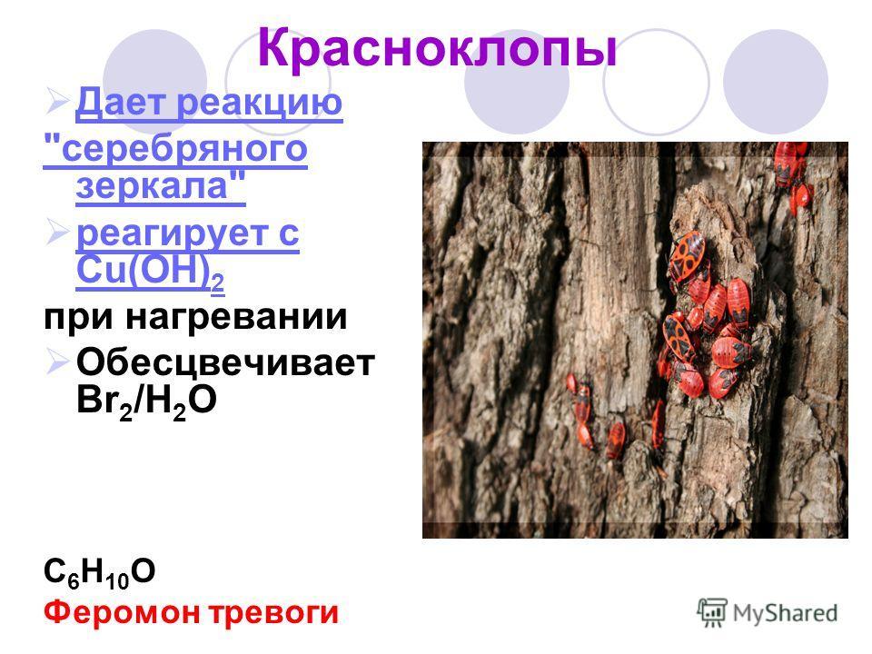 Красноклопы Дает реакцию серебряного зеркала реагирует с Cu(OH) 2 реагирует с Cu(OH) 2 при нагревании Обесцвечивает Br 2 /H 2 O С 6 H 10 O Феромон тревоги