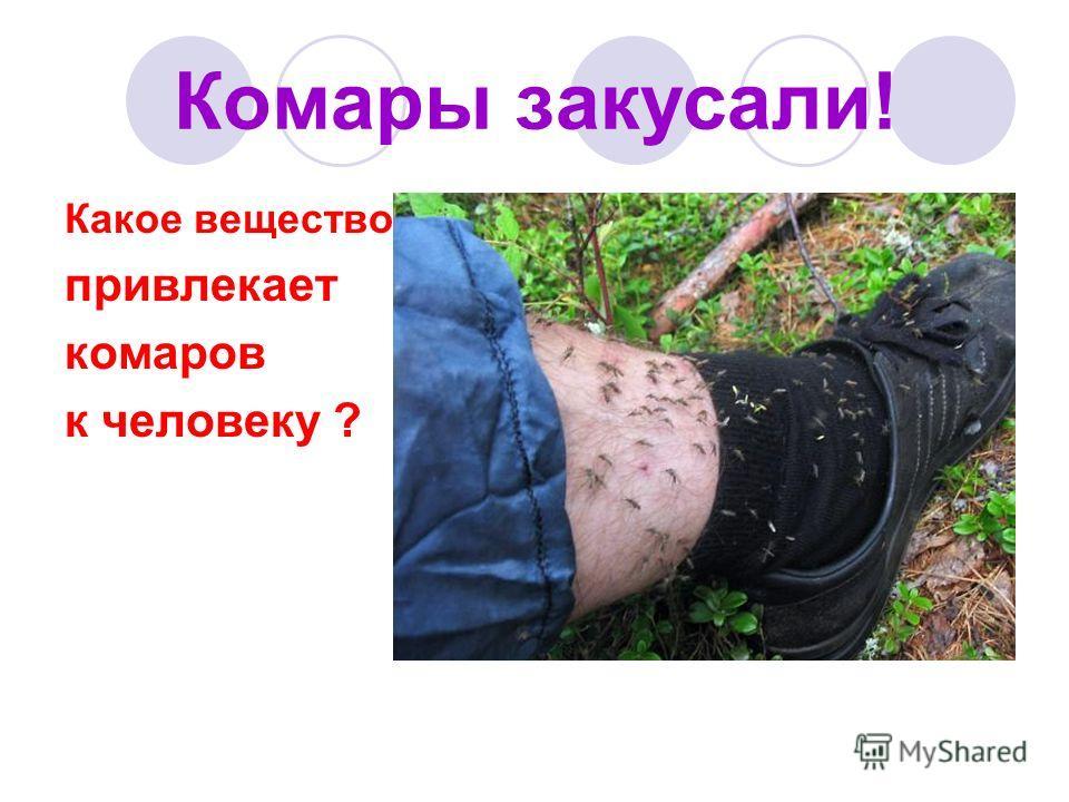 Комары закусали! Какое вещество привлекает комаров к человеку ?