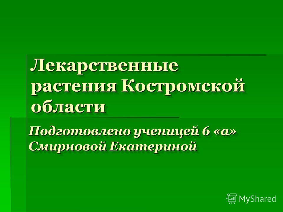 Лекарственные растения Костромской области Подготовлено ученицей 6 «а» Смирновой Екатериной
