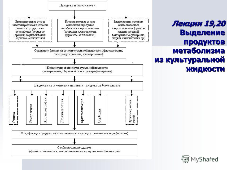 1 Лекции 19,20 Выделение продуктов метаболизма из культуральной жидкости