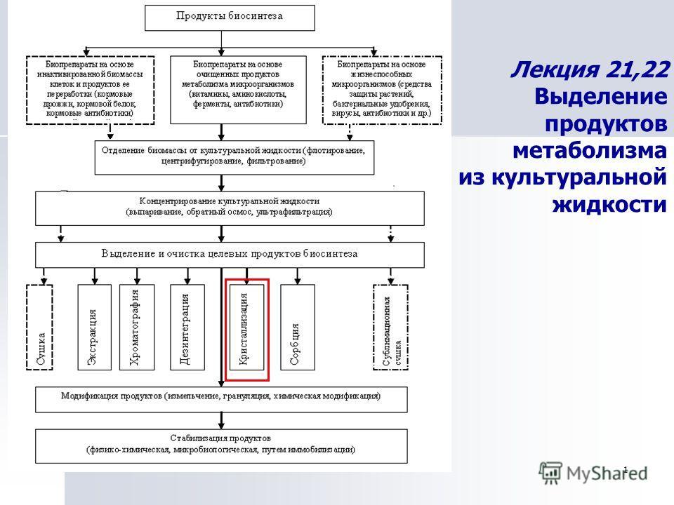 1 Лекция 21,22 Выделение продуктов метаболизма из культуральной жидкости