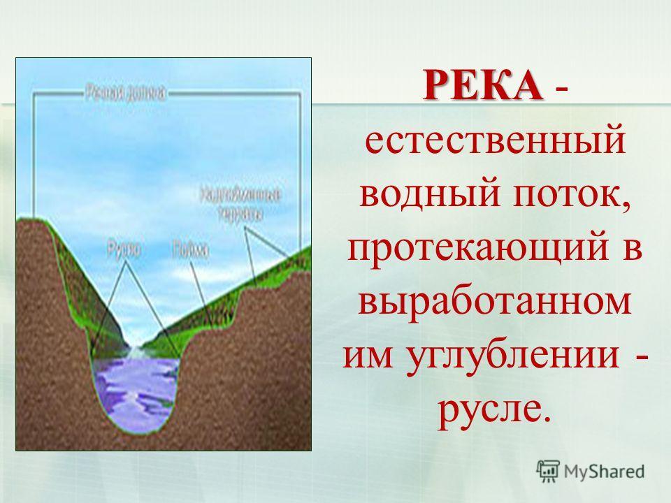 РЕКА РЕКА - естественный водный поток, протекающий в выработанном им углублении - русле.