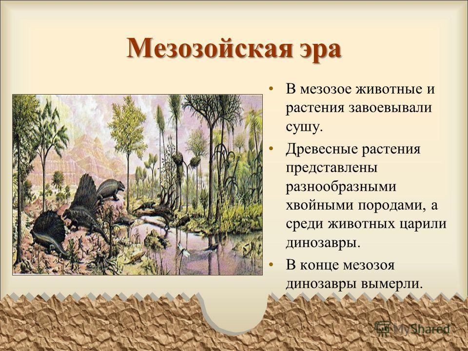 Мезозойская эра В мезозое животные и растения завоевывали сушу. Древесные растения представлены разнообразными хвойными породами, а среди животных царили динозавры. В конце мезозоя динозавры вымерли.