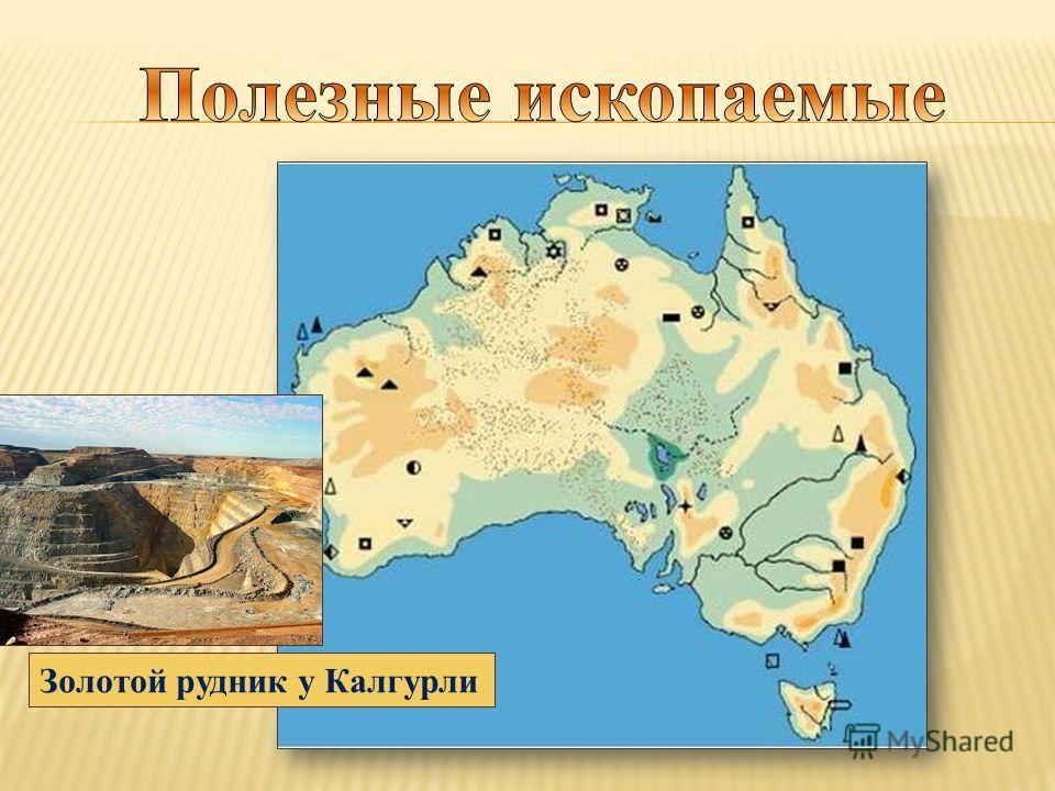 Золотой рудник у Калгурли