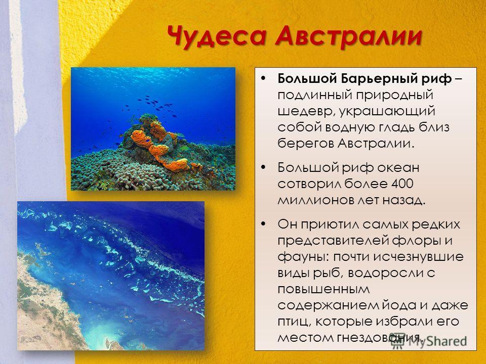 Большой Барьерный риф – подлинный природный шедевр, украшающий собой водную гладь близ берегов Австралии. Большой риф океан сотворил более 400 миллионов лет назад. Он приютил самых редких представителей флоры и фауны: почти исчезнувшие виды рыб, водо