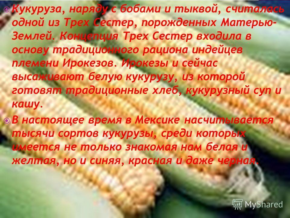 Кукуруза, наряду с бобами и тыквой, считалась одной из Трех Сестер, порожденных Матерью- Землей. Концепция Трех Сестер входила в основу традиционного рациона индейцев племени Ирокезов. Ирокезы и сейчас высаживают белую кукурузу, из которой готовят тр
