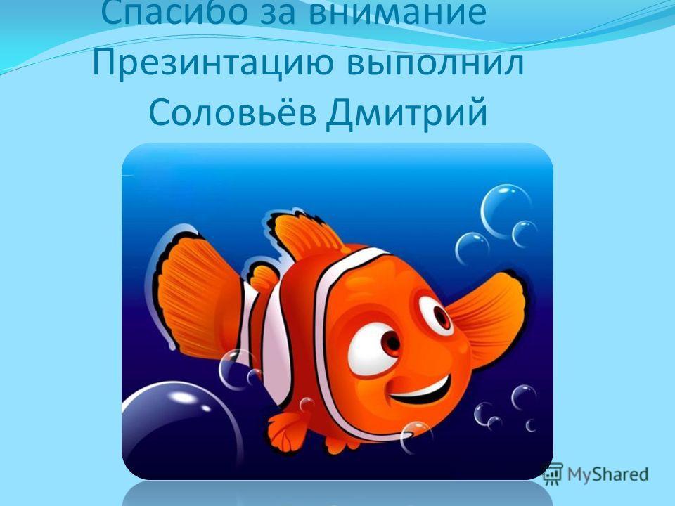Спасибо за внимание Презинтацию выполнил Соловьёв Дмитрий
