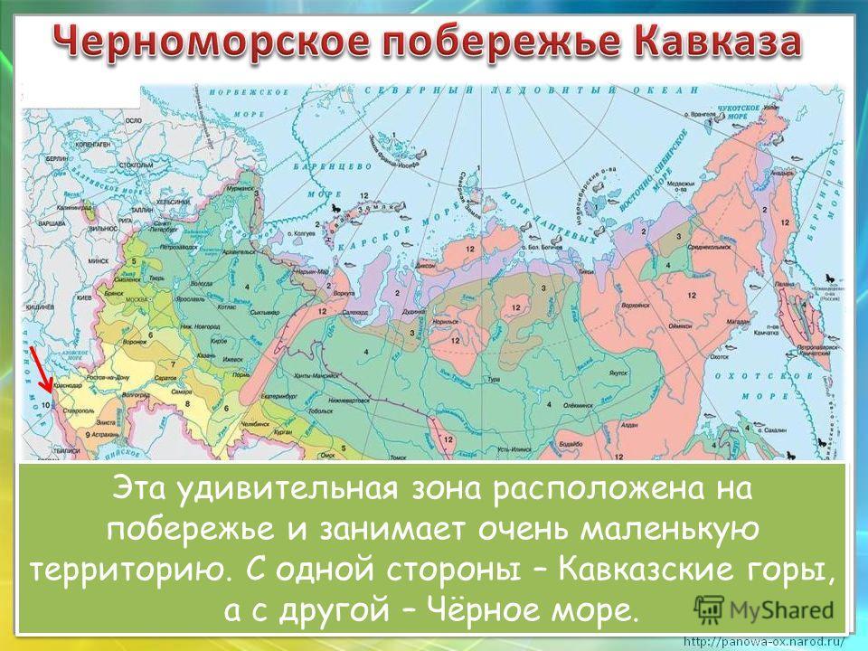 Эта удивительная зона расположена на побережье и занимает очень маленькую территорию. С одной стороны – Кавказские горы, а с другой – Чёрное море.