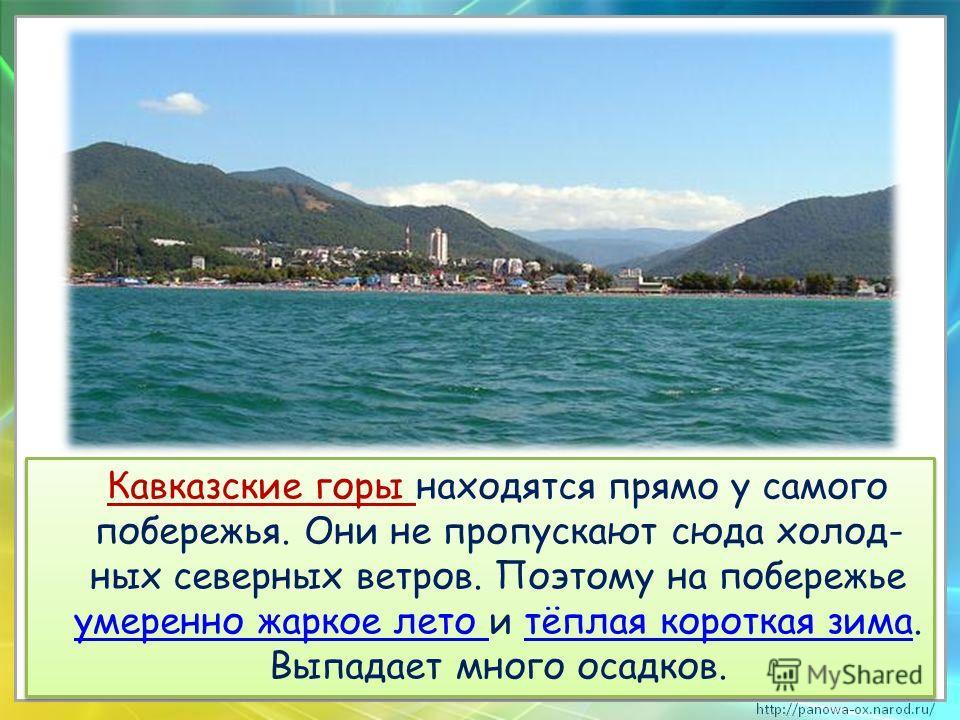 Кавказские горы находятся прямо у самого побережья. Они не пропускают сюда холод- ных северных ветров. Поэтому на побережье умеренно жаркое лето и тёплая короткая зима. Выпадает много осадков.