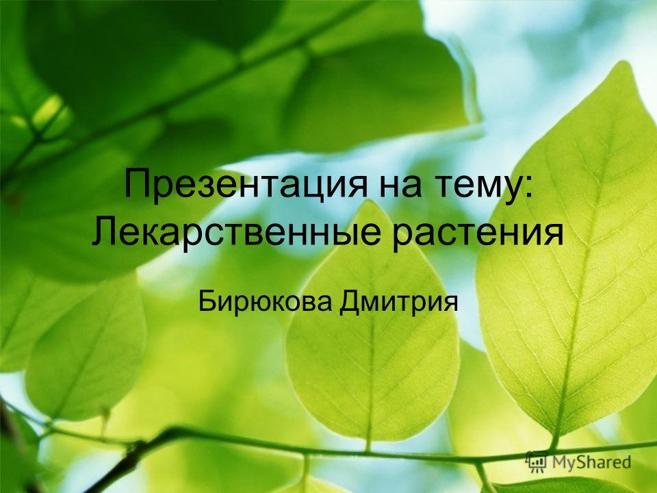 Презентация на тему: Лекарственные растения Бирюкова Дмитрия