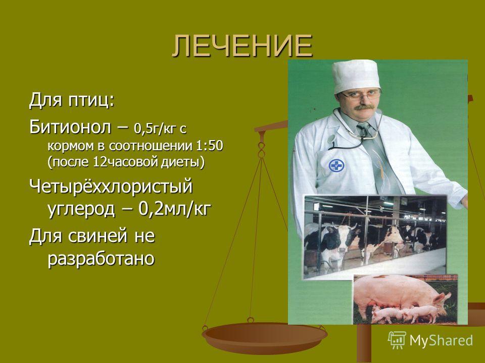 ЛЕЧЕНИЕ Для птиц: Битионол – 0,5г/кг с кормом в соотношении 1:50 (после 12часовой диеты) Четырёххлористый углерод – 0,2мл/кг Для свиней не разработано